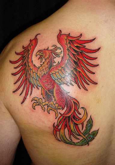 Tattoo Phoenix Aus Der Asche Hylenmaddawardscom