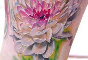 Blumen Part 02
