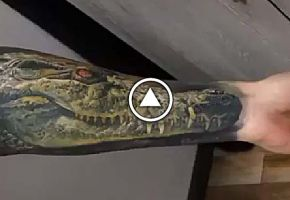 Dmitriy Samohin Tattoo-Video