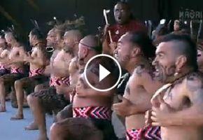 Traditionelle Maori-Haka