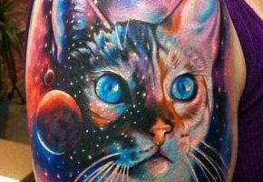 24 wundervolle Katzen-Tattoos