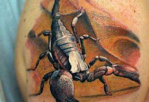 Die krabbelige Welt der Skorpion-Tattoos