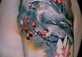 Tattoo-Asche