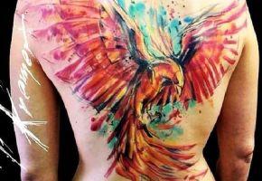 Viele farbenfrohe Aquarell-Feuervögel