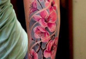 40 cute Cherry Blossoms