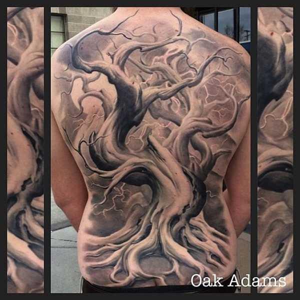 Oak-Adams-2