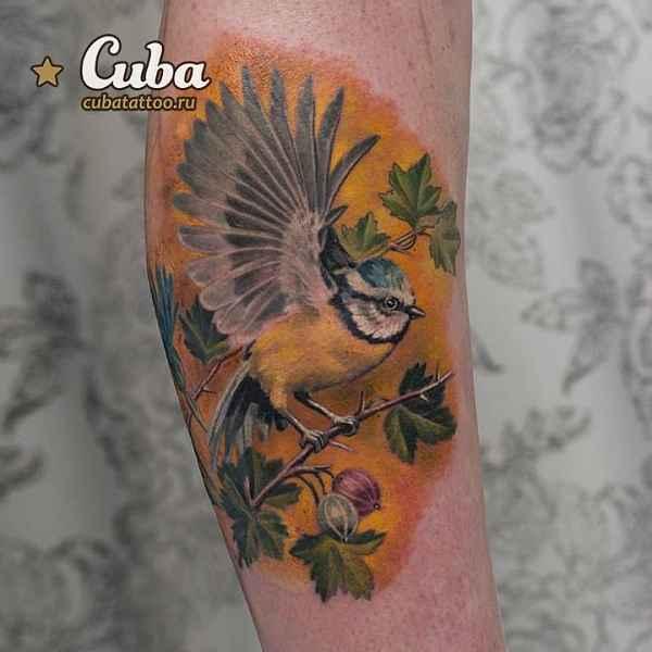Karina Cuba 002