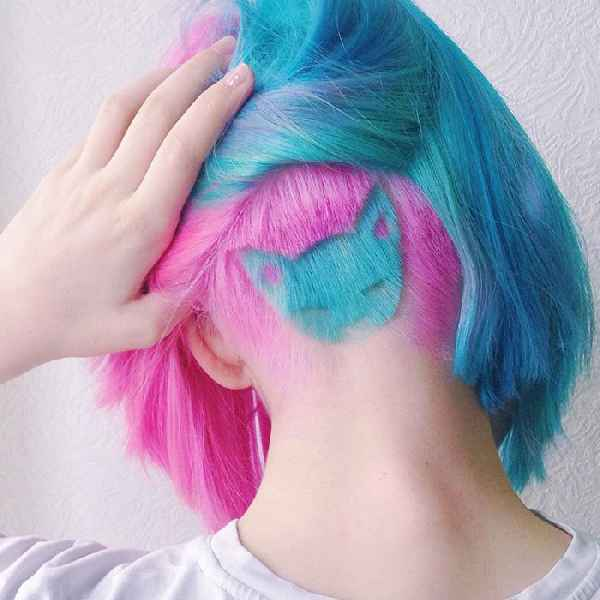 cat-hairstyle-rainbow-undercut-001