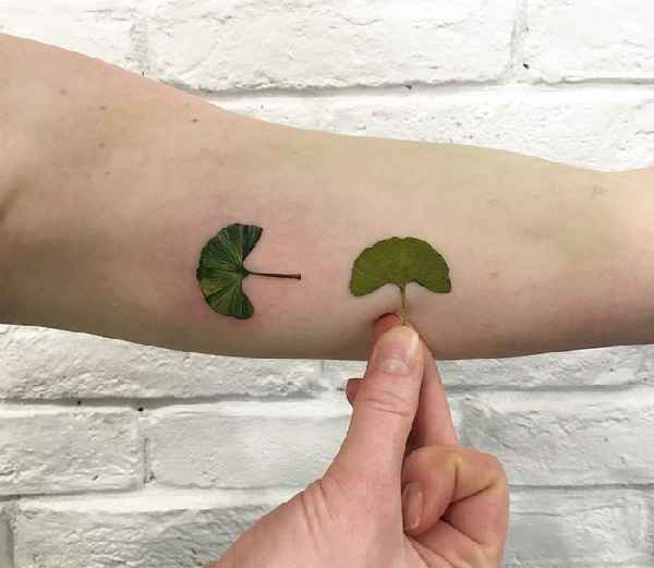 plant-tattoos-leaves-flora-botanical-rita-zolotukhina-05