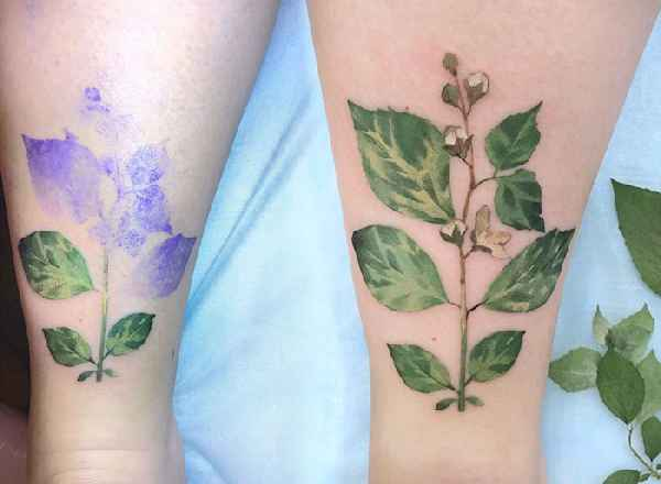 plant-tattoos-leaves-flora-botanical-rita-zolotukhina-07