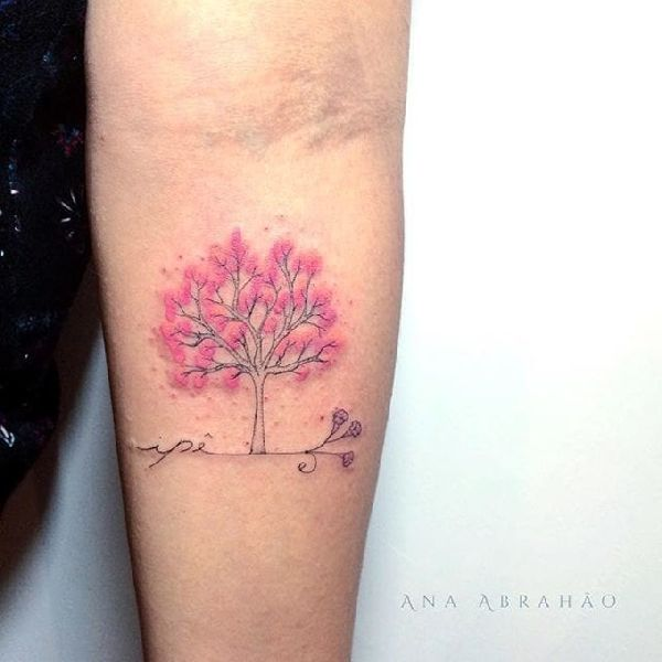 Ana Abrahão 001