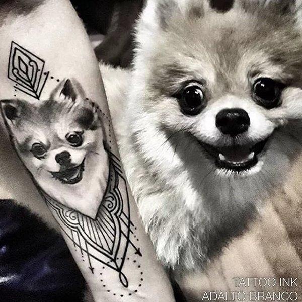 Pomeranian-Tattoo-05-Adalto Branco 001