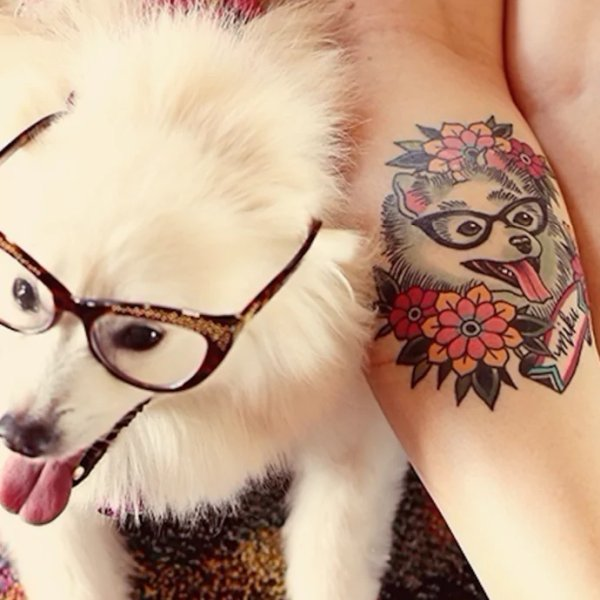 Pomeranian-Tattoo-10-Becca Genne-Bacon 001