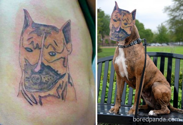 Tattoo-Fails-016